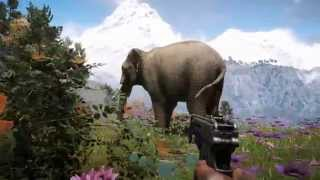 Far Cry 4 (Video Game)