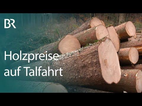 Nach Sturm Und Borkenkäfer Holzpreise Auf Talfahrt Unser Land