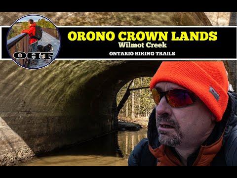 Hiking At Orono Crown Lands