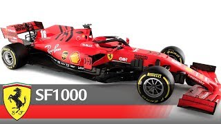 Discovering the SF1000