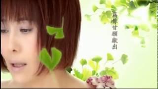 江蕙 -心狠手辣 hsing hen shou la(Official Music Video)