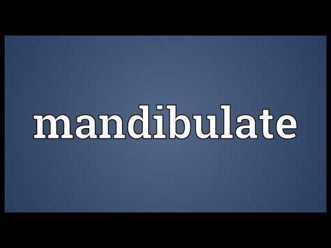 Header of mandibulate