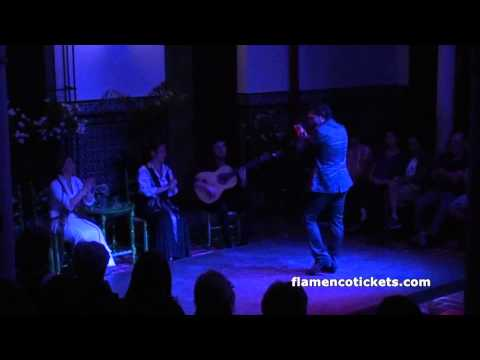 La Casa del Flamenco Flamenco Show in Seville - Video 2 (Flamencotickets.com)