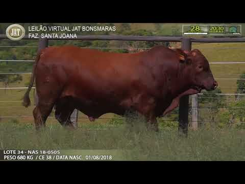 LOTE 034