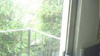 lower 1 bed apartment for rent in santa monica 4th st raymond ave 562rent com