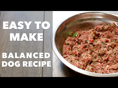 homemade-dog-food-recipe