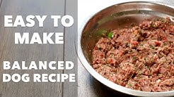 Homemade Dog Food Recipe