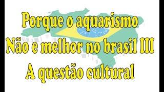 Porque o Aquarismo Não e Melhor no Brasil III - A Questão Cultural