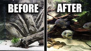 aquarium-makeover