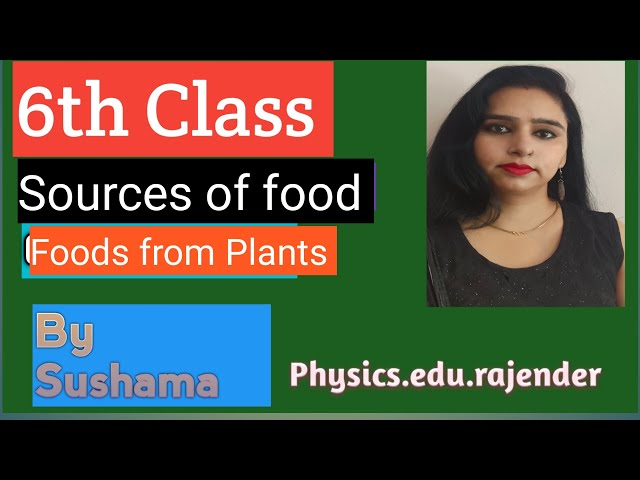 6th Science Sources of Food