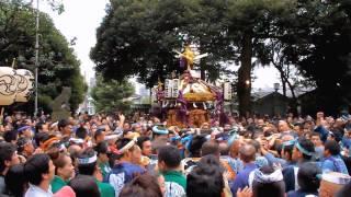 2012年 太子堂八幡神社例大祭 連合神輿渡御~世田谷区制80周年記念(HD) thumbnail