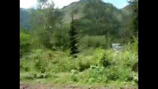 Путешествие по Горному Алтаю с элементами рыбалки. Journey through the Altai Mountains(, 2011-06-15T14:02:23.000Z)