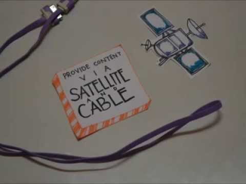 Digital Satellite Broadcasting