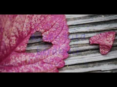 Cinta Selembut Awan (Lyrics) - KATON BAGASKARA
