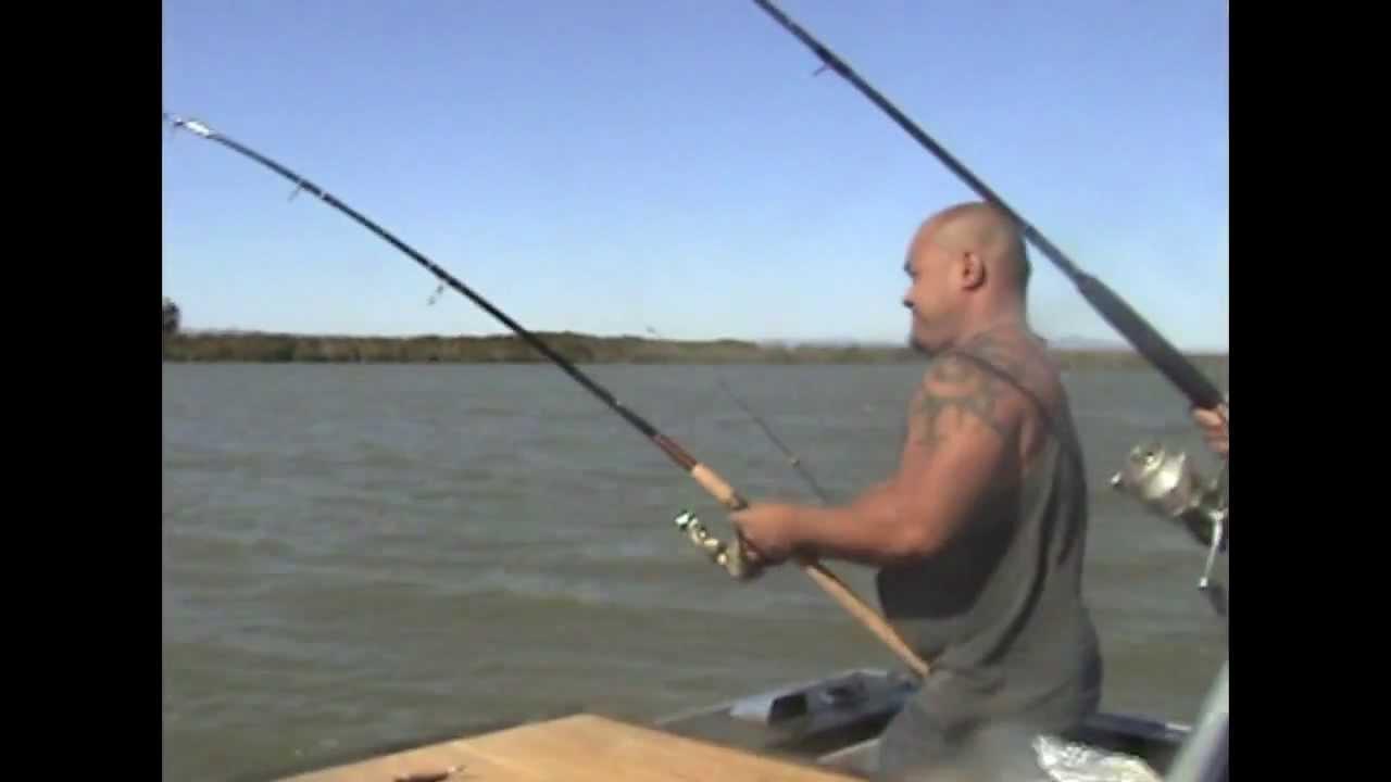Striped bass fishing in the california delta youtube for California delta fishing report