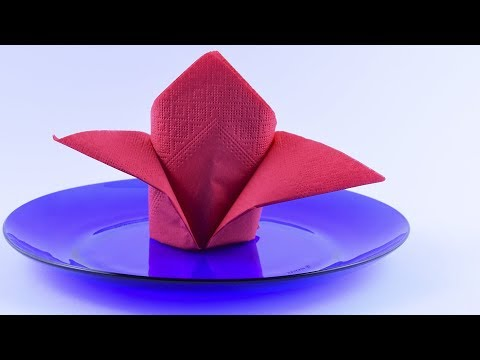 DIY ♡ Folding napkins of paper for plates Tutorial Table Setting