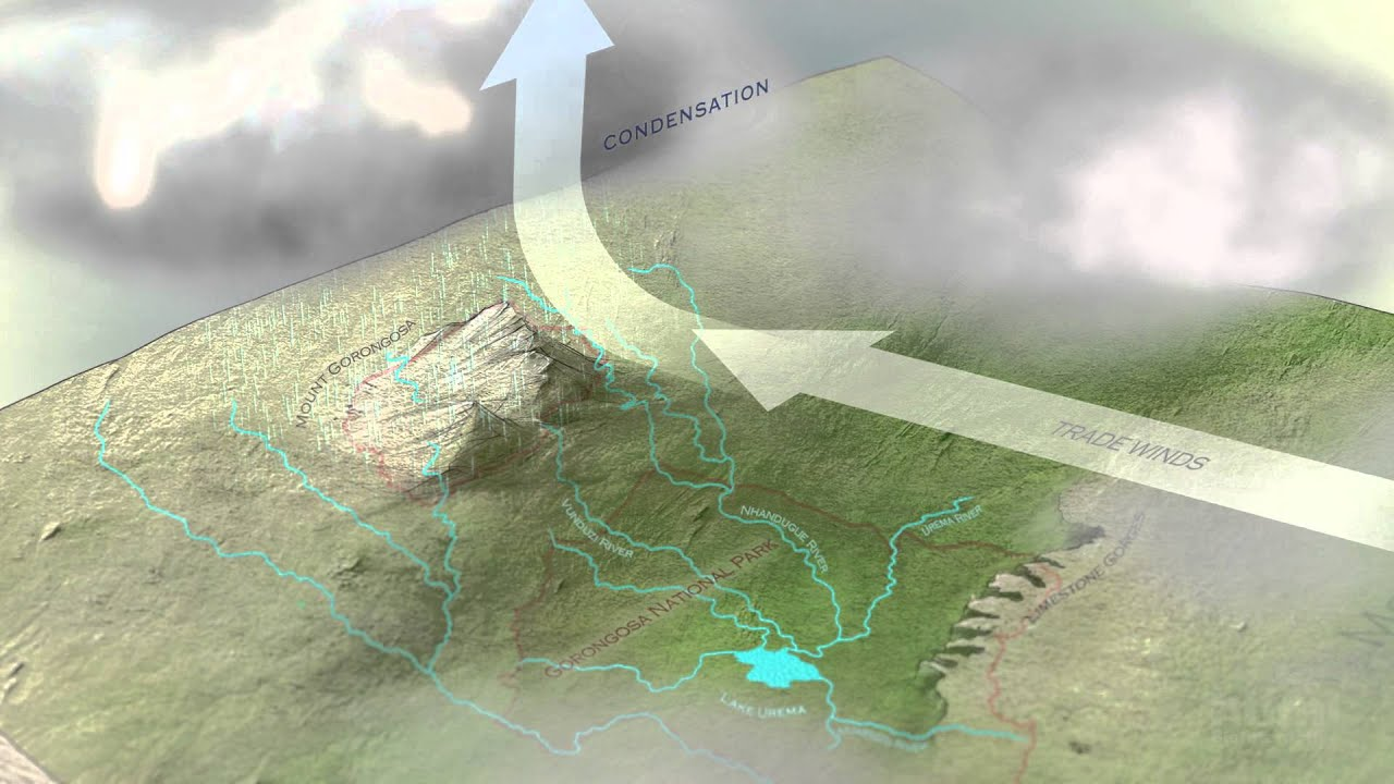 hight resolution of animated water cycle diagram earth guide