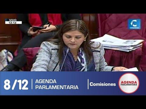 sesion-comisión-de-constitución-8/12-(02/07/19)