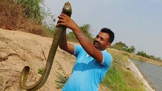 Fishing||fishhunting|| Big eel fish/Alien fish