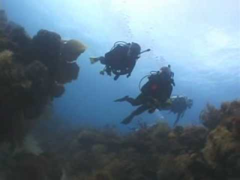 Scuba diving st croix
