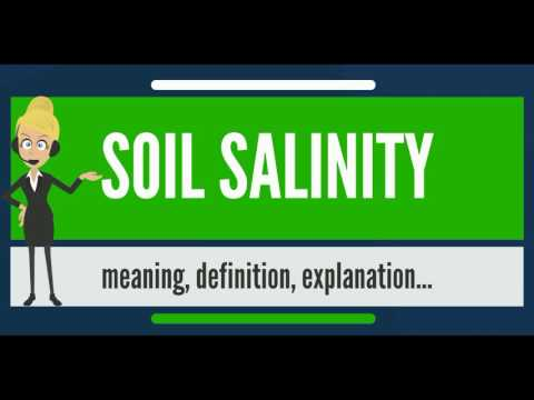 What is SOIL SALINITY? What does SOIL SALINITY mean? SOIL SALINITY meaning, definition & explanation