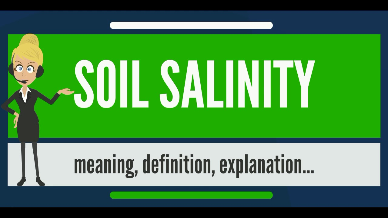 What is soil salinity what does soil salinity mean soil for What is meant by soil