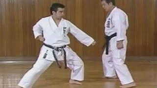 Karate  Blocks - Uke