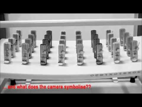 Behaviour change demonstration - Synchronicity
