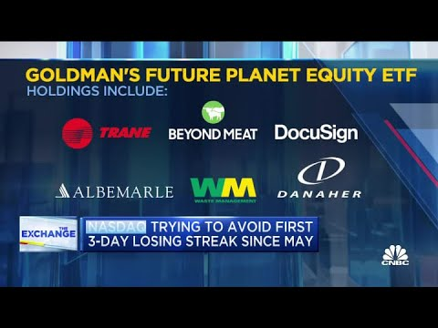 Goldman Sachs launches the Future Planet Equity Fund