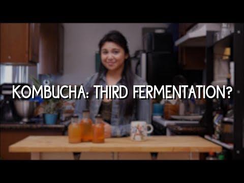 Kombucha: Third Fermentation?