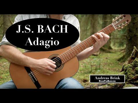J.S. Bach - Adagio (on classical guitar)