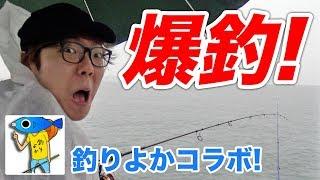 初めて船で釣りしたら釣れすぎたwww【ヒカキン×釣りよかでしょう。】 HIKAKIN 動画 29