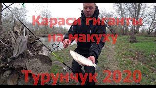 Рыбалка Днестр 2020 с Троицкое Одесская обл огромные караси по 1кг