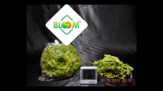 Салат в пакете Bloom