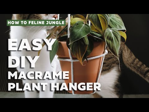 diy-macrame-plant-hanger-(easy-tutorial)