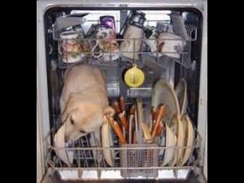 Видео Посудомоечная машина bosch spv63m50ru инструкция по монтажу