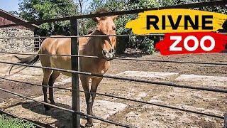 Зоопарк г. Ривне - один из лучших в Украине