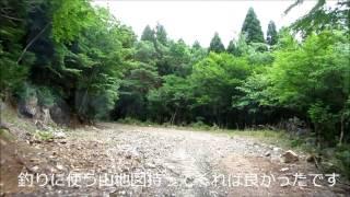 東陽村河俣から子別峠へ抜ける林道