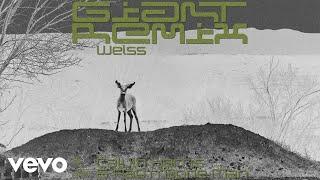Calvin Harris, Rag'n'Bone Man - Giant (Weiss Remix) [Audio] Video
