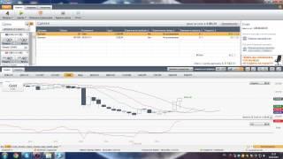 Forex для начинающих.  Как заработать на бирже Бесплатное обучение форекс и рынок ценных бумаг