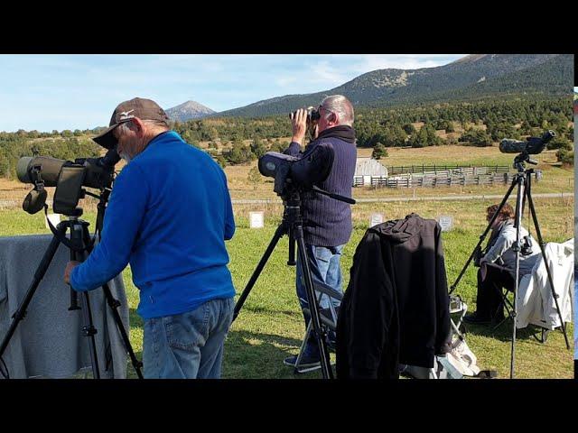 Spot d'observation de la migration des oiseaux. Col de La Perche, Eyne.