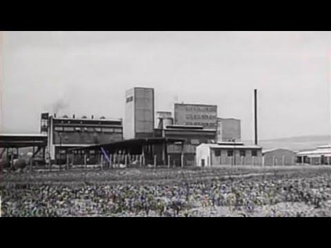 Košice - Magnezitka (1959)