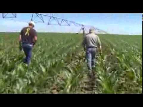 What is The Nebraska Ag Water Management Network?