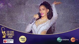 Zee Cine Awards 2020 | Tonight at 7:30PM