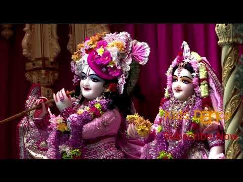 mai aarti teri gau song || Akshara song Krishna Janmashtami