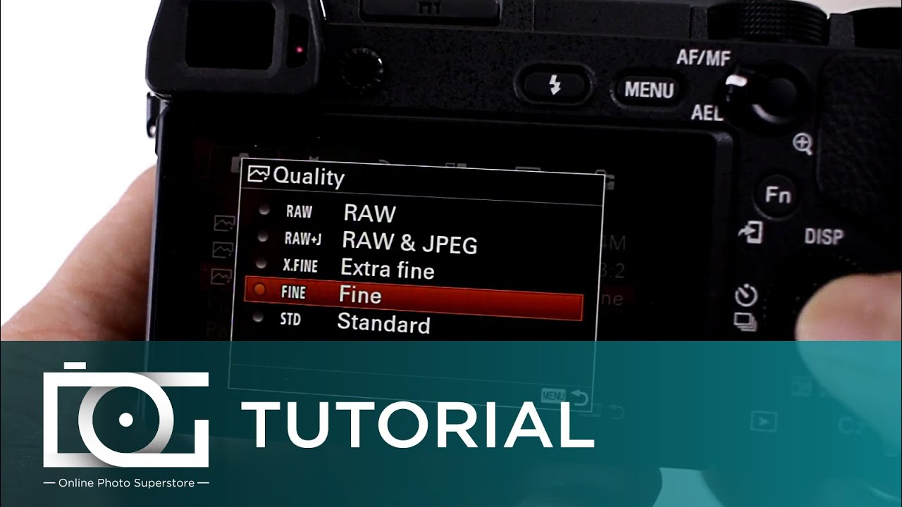 SONY ALPHA A6300 TUTORIAL | How To Shoot RAW & JPEG