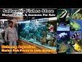 Marine Fish Aquarium Shop, Banglore Gulmarg aquarium #Salt water fish in India |Bengaluru