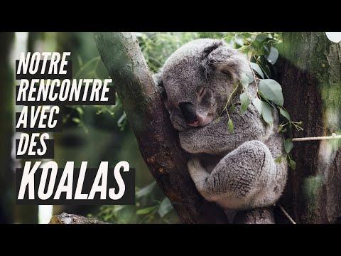tricher sites de rencontres Australie où brancher le sélecteur de cerise
