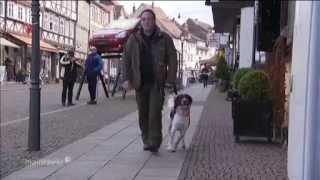 Bettwanzen Spürhund Bettwanzen-profi.de - Foto- & Tonstudio Uslar