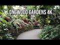 LONGWOOD GARDENS - Winter 2019 Walkthrough [4K] [DJI Osmo Pocket]
